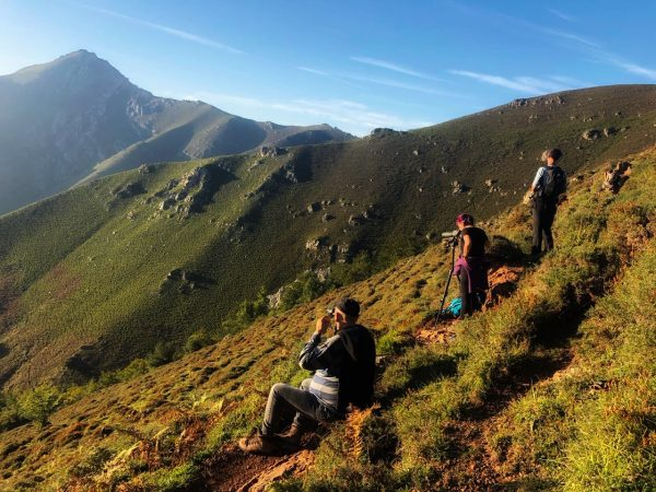 La Berrea en el concejo de Aller, Asturias