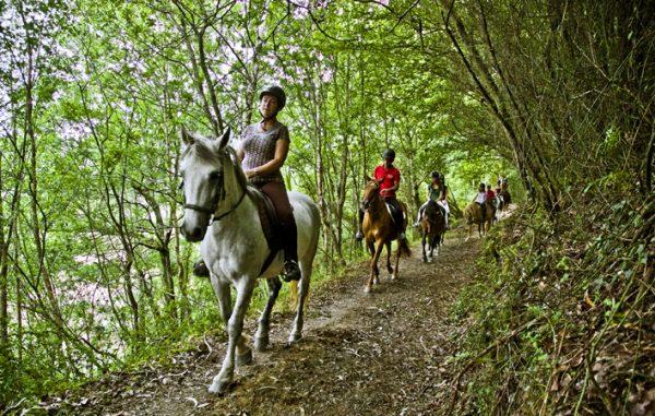 Turismo activo en Asturias: Rutas a caballo por Ribadesella